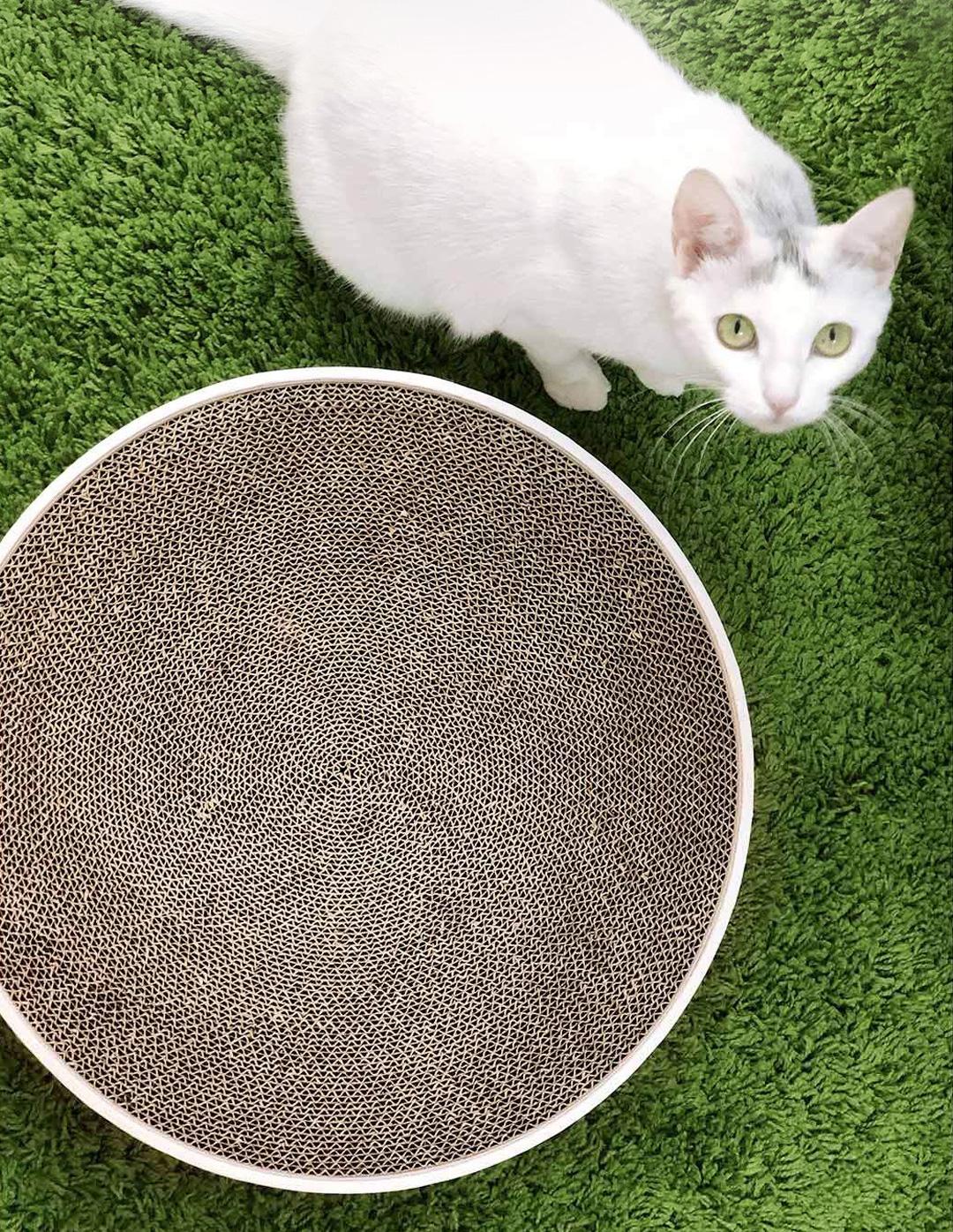 Xiaomi Jordan Judy Cat Scratcher